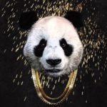 "Desiigner ""Panda"""